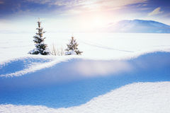 Snow-covered lake in winter after snowfall. Stock Photos