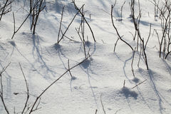 Snow-covered land closeup winter day Stock Images