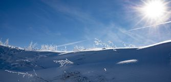 Snow covered landcape. Close up royalty free stock photos