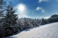 Snow-covered landscape Royalty Free Stock Image