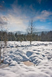 Snow covered landscape Royalty Free Stock Photos