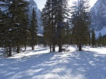 Snow-covered landscape with cross country ski track stock photo