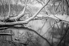 Snow covered landscapes in belmont north carolina along catawba. River Royalty Free Stock Image