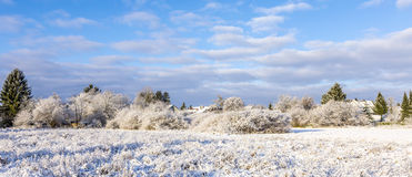 Snow-Covered Landschaft Lizenzfreies Stockfoto