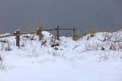 Snow-covered landschap in knokke-Heist Royalty-vrije Stock Foto's