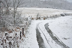 Snow covered lane Stock Photography