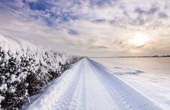 Snow covered lane in Oxfordshire Royalty Free Stock Photography
