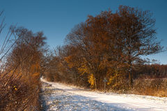 Snow covered Lane in Winter royalty free stock image