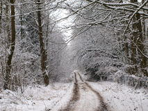 Snow covered lane in a wintery countryside Stock Photos