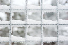 Snow covered latticed fence Stock Image