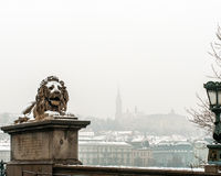 Snow-covered Lion Statue, Boedapest, Hongarije Stock Fotografie