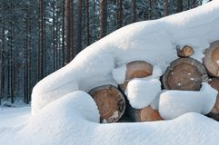 Snow Covered Log Pile Stock Photo