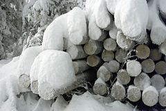 Snow covered log pile. Closeup of snow covered log or timber pile outdoors Royalty Free Stock Photo