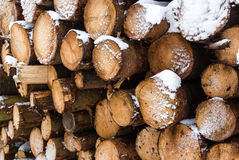 Snow covered logs Stock Photos