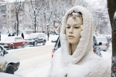 Snow covered mannequin Stock Images