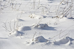 A snow-covered meadow with drifts Royalty Free Stock Image