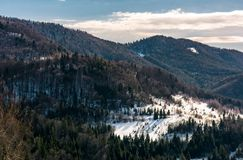Snow covered meadow among forest in mountains. Snow covered meadow among forest on hillside. beautiful nature scenery in winter in mountains Stock Photography