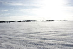 Snow covered meadow. Meadow in Germany, in the winter of 2010, covered with virgin snow Royalty Free Stock Images