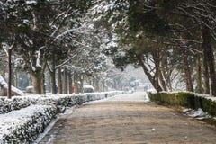 Snow covered Ming tomb deity path Stock Photos