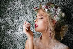 Snow-covered mooi meisje royalty-vrije stock fotografie