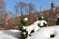 Snow-covered Moskou Gemodelleerd park na zware sneeuwval Sneeuw op tak royalty-vrije stock foto