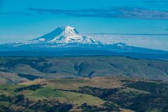 South side of snowy Mount Adams seen from Oregon. Snow-covered Mount Adams seen from Oregon Royalty Free Stock Photography