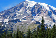 Snow covered Mount Rainer Stock Images