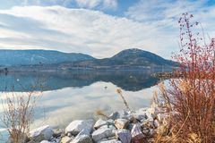 Snow covered mountain and clouds reflected in calm water of lake with rocky shore and wild rosehips in foreground royalty free stock photo
