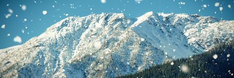 Snow covered mountain in forest. Scenic view of snow covered mountain in forest Royalty Free Stock Image