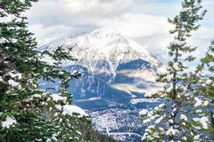 Snow covered mountain framed by winter pine trees in foreground. Town nestled in the valley below Stock Photos