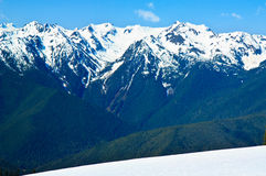 Snow covered Mountain, Hurricane Ridge, Olympic NP Stock Photography