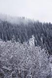 Snow covered mountain Ile Alatau on cloudy day Stock Photo
