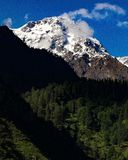 Snow covered mountain with lush green forest under it royalty free stock photography