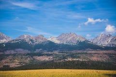 Snow covered mountain peak Royalty Free Stock Photo