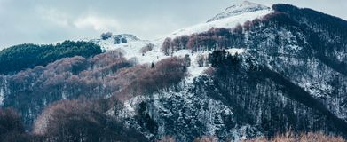 Snow covered mountain top Stock Photos
