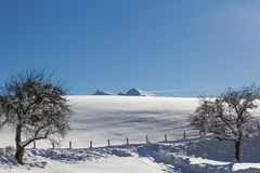 Snow covered mountain top in tirol. Hohe Salve with Brixental near Kitzbuhel Stock Photography