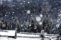 Snow covered mountain wooden hut. During heavy snofall. Cottage in the mountains at winter Royalty Free Stock Photos