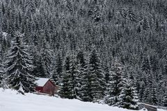 Snow covered mountain wooden hut. Barn in the mountains at winter Stock Images