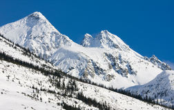 Snow covered mountains. In the Rocky Mountains in British Columbia, Canada Stock Photo