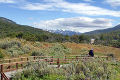 Snow covered mountains above a boardwalk through Tierra del Fuego National Park. Snow covered mountains above a boardwalk running through the summer grasslands royalty free stock images