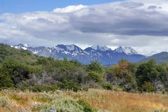 Snow covered mountains above Tierra del Fuego National Park. Snow covered mountains above summer grasslands in the Tierra del Fuego National Park, near Ushuaia Royalty Free Stock Photo