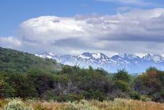 Snow covered mountains above Tierra del Fuego National Park. Snow covered mountains above summer grasslands in the Tierra del Fuego National Park, near Ushuaia Stock Photos