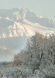 Snow covered mountains in  Alaska Royalty Free Stock Images