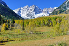Snow covered mountains with colorful aspen during foliage season Stock Image