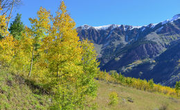 Snow covered mountains with colorful aspen during foliage season Stock Photo