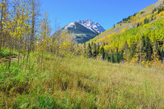 Snow covered mountains with colorful aspen during foliage season Stock Photos