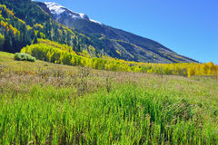 Snow covered mountains with colorful aspen during foliage season Royalty Free Stock Photo