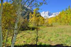 Snow covered mountains with colorful yellow, green and red aspen during foliage season Stock Images