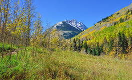 Snow covered mountains with colorful yellow, green and red aspen during foliage season Stock Image