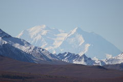 SNOW COVERED MOUNTAINS MT MCKINLEY DENALI ALASKA. Snow covered mountains clear blue sky and fall tundra in the foreground. Mountain in middle is Mount McKinley ( Stock Images